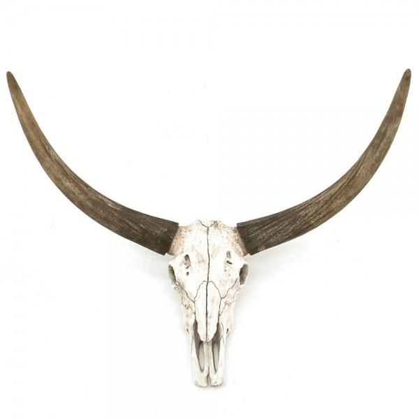 BY-BOO Wand Skulptur Ox Head SKULL Hörner Tierkopf