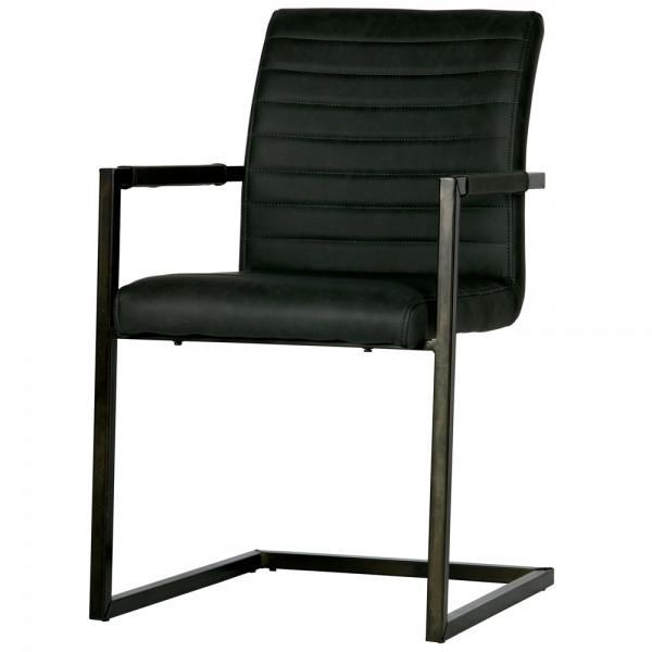 2er Set Stuhl BAS Armlehne Freischwinger Schwingstuhl