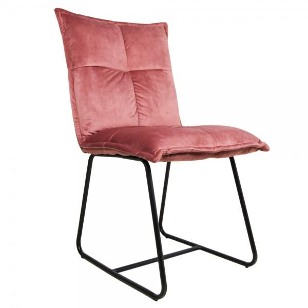 2er Set Stuhl Estelle champagner Samt Velvet Kufenstuhl Esszimmerstuhl Küchenstuhl